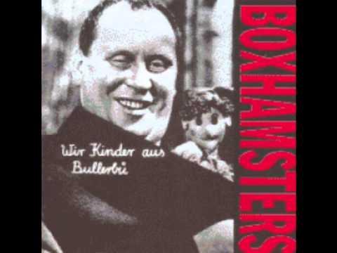 Boxhamsters Die Kinder Sind In Ordnung !!?