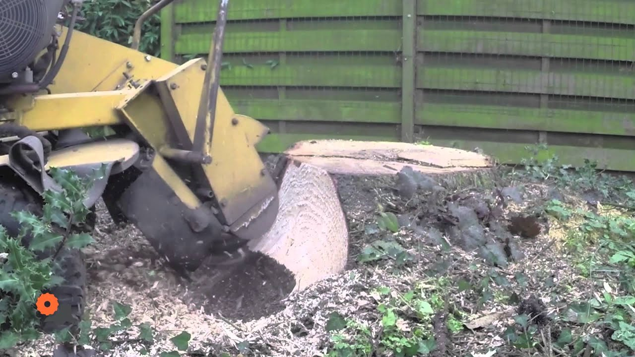 Vermeer Stump Grinder >> Stobbenfrees, stronkenfrees slow motion video (boomstronkfrees, wortelfrees, stump grinder ...