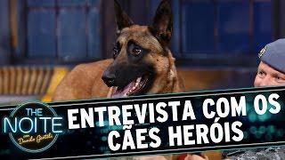 The Noite (28/08/15) - Entrevista com os Cães Heróis da Polícia Militar