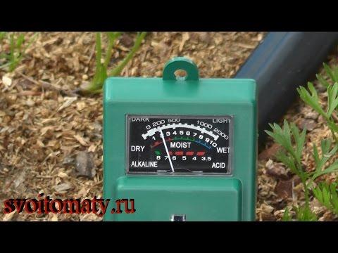 Мульчирование опилками и другое их применение в огороде