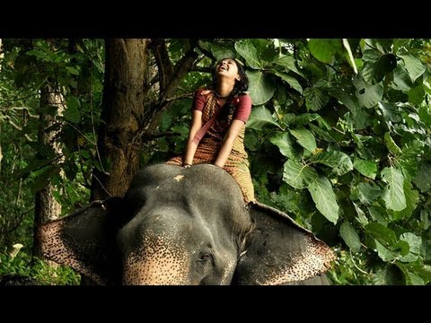 Aiyaiyaiyo Aanandhamae  video song hd Kumki video songs hd