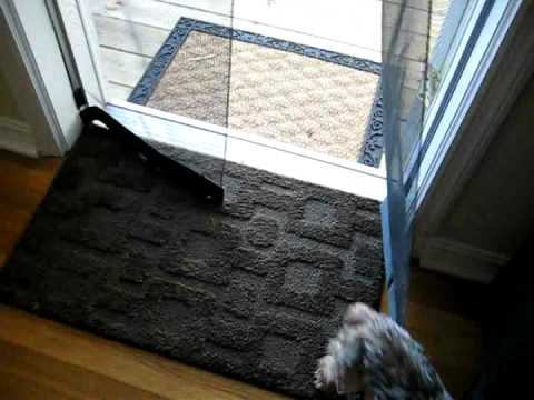 Bug off instant screen door review how to save money and for Bug off instant screen door