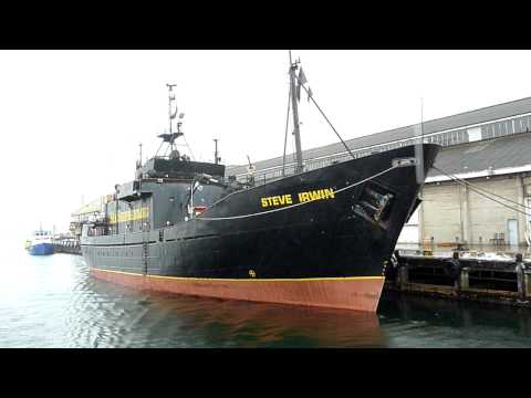 Sea Shepherd ships Steve Irwin and Bob Barker docked in Hobart after raids