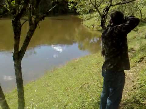 Pesca com arco e flecha.