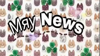 Funny Animals| Первое видео| Мяу News