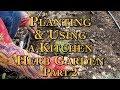 Lagu Planting & Using a Kitchen Herb Garden Part 2
