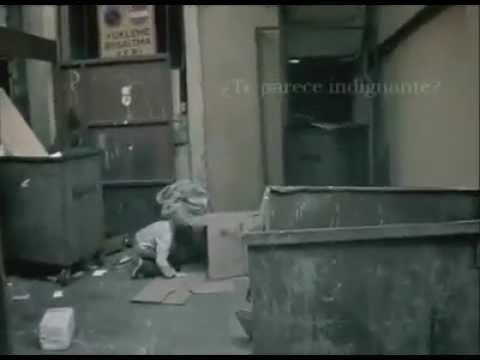 Uno de los mejores vídeos para generar conciencia