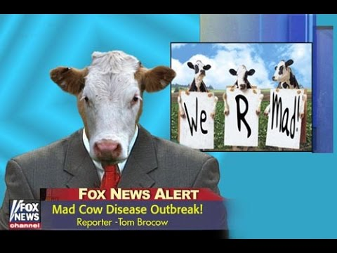 TPP unconstitutional foreign beef in USA Mad Cow Foot mouth disease concerns Breaking News July 2015