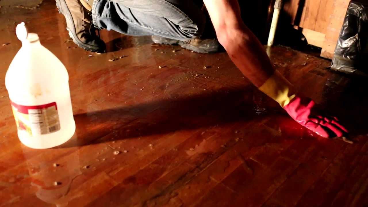 Vinegar Treatment On Wood Floors Youtube