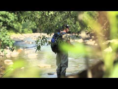 Ловля Форелі в Карпатах. Trout Fishing in the Carpathians