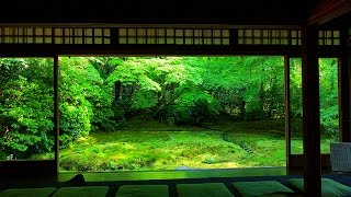 The Garden of KyotoTemple.