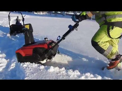 Snösnopp vid Askimsbadet till minne av snoppen i vallgraven