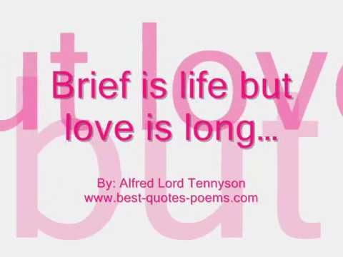 Famous Valentine Day Quotes & Sayings Video