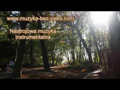 Muzyka Bez Opłat ZAIKS, Do Lokali - Muzyka Relaksacyjna, Rozrywkowa