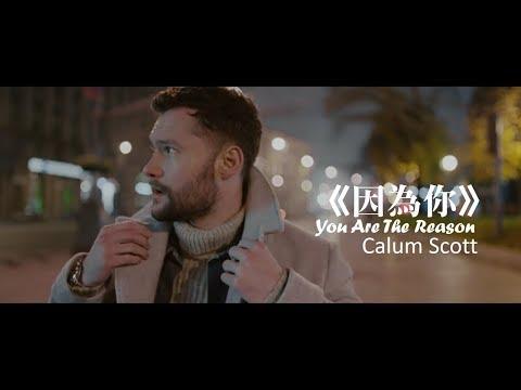 Calum Scott - You Are The Reason 因為你 (中文字幕MV) MP3