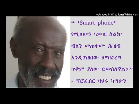 Interview With Prof Bahiru Kassahun - SBS Amharic