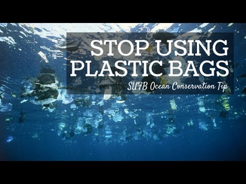 Ocean Conservation Tip: Alternative To Plastic Bag