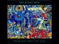 Song For John – The Heavy Pets feat. David Grisman (Swim out Past the Sun)