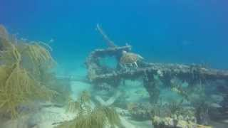 Belzona Wreck & Rainbow Reef - Miami Beach