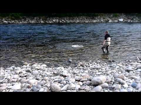 Gaula 2011 Monster Salmon 21,1 kg (46 ½ lb) - Norwegian Flyfishers Club