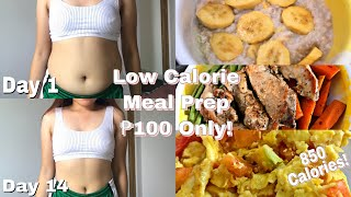 Easy Low Calorie Meal Plan For ₱100 Only! (835 Calories!)