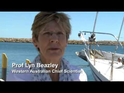 CSIRO Scientists Tell the Story of 'The RV Lady Amber'.
