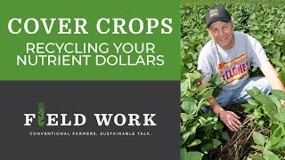 Cover Crops Part 2: Recycling Your Nutrient Dollars