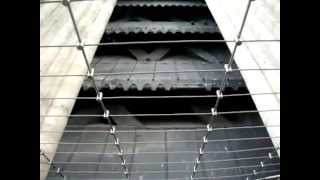Cathedral Notre-Dame de Paris_Emmanuel-Ringing-Bell-weight 13 000 kg_Fa # 2.mp4