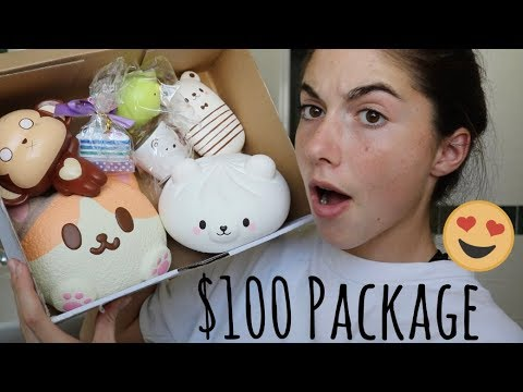 JUMBO SQUISHY PACKAGE!!! I GAVE THEM $100 TO BUY ANYTHING...