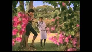 Ada Neeyanamma Chumma Nillamma |Tamil Song | Kai  Nattu