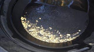 Back Yard Gold Cleanup