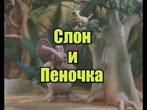 Слон и Пеночка. Мультфильм