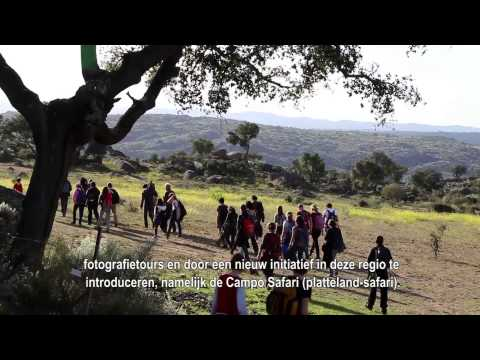 Introductiefilm Rewilding Europe: the case of Western - Iberia (NLD)