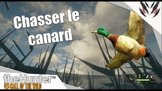 THE HUNTER CALL OF THE WILD : LES CANARDS [THCOTW][TUTO]