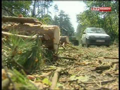 Trąba Powietrzna Wola Batorska TV