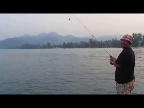 как ловить рыбу в тайланде с берега