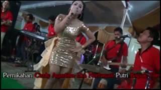 download lagu Suket Teki Dandut Koplo Cover Irma Dara Ayu New gratis
