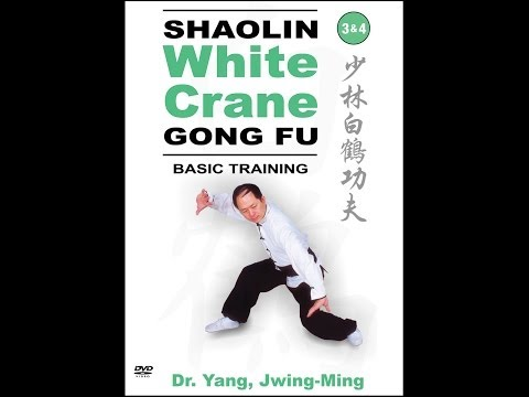 Shaolin White Crane Kung Fu - the root of Okinawan Karate