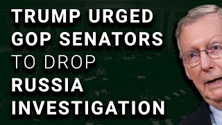 Trump Tried to Push Senators to End Russia Investigation
