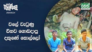 Neth Fm Balumgala | 2020-02-24