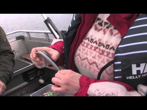 Pike Fishing in Russia & Finland