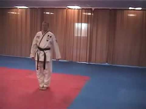 sheldon family taekwondo ata brown belt form