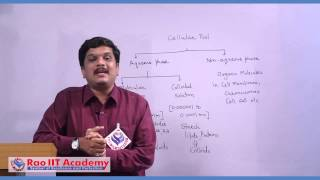 Introduction to Biochemistry of Cell - NEET AIPMT AIIMS Botany Video Lecture [RAO IIT ACADEMY]