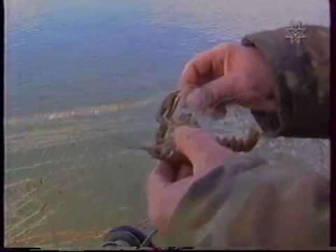 рыбацкие реалии удмуртия
