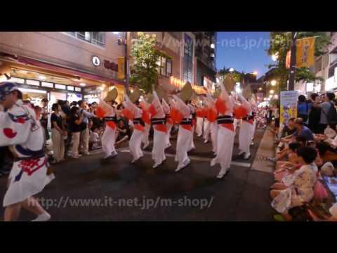 第45回 神楽坂まつり(阿波踊り)