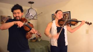 Miley Cyrus - Wrecking Ball (Violin and Viola Cover by David Wong and Stephanie Price)