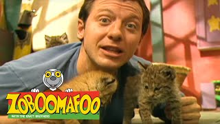 Zoboomafoo 120 - Animal Daycare (Full Episode)