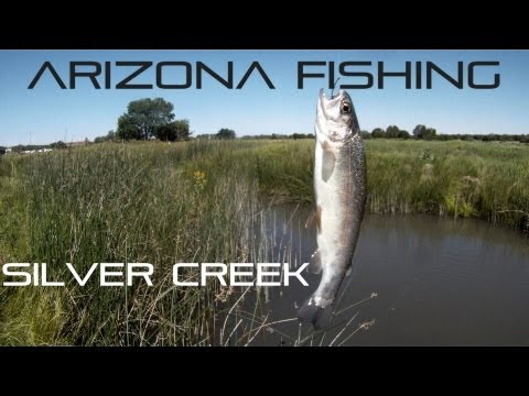 Arizona Fishing Silver Creek