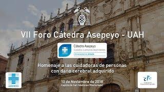 VII Foro Cátedra Asepeyo-UAH · 10/11/2017