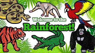 Learn Wild Zoo Animals Names and Sounds for Kids | Rainforest Wild Animals Matching Game Animation